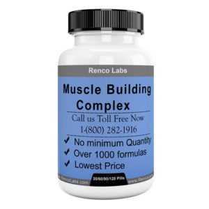 Muscle Building Formula (Copy)
